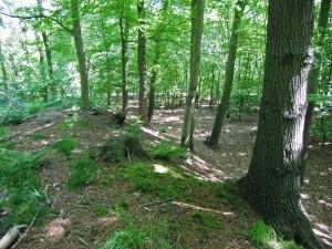 Een hout(?)wal bij Stroe.